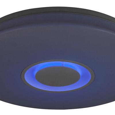 Levné Stropní svítidla: Stropní LED stmívatelné osvětlení MURRY, 24W, studená bílá, 40cm, kulaté