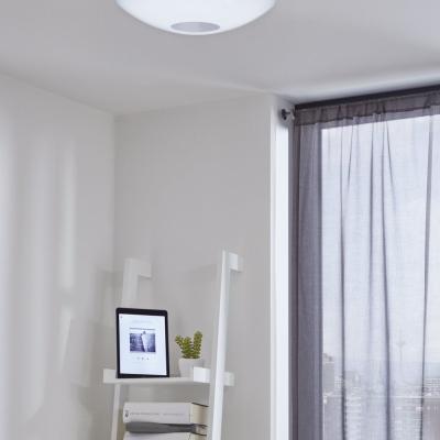 Levné Stropní svítidla: LED stropní svítidlo VOLTAGO-C, kulaté