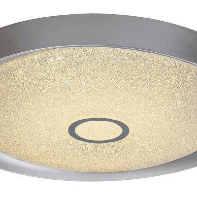 Levné Stropní svítidla: Stropní LED stmívatelné svítidlo SKYLER, 22W, 40cm, kulaté