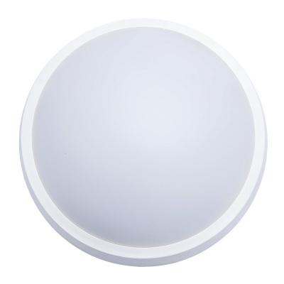 Levné Venkovní LED světla: Solight LED venkovní nástěnné / stropní osvětlení, 32cm, bílé