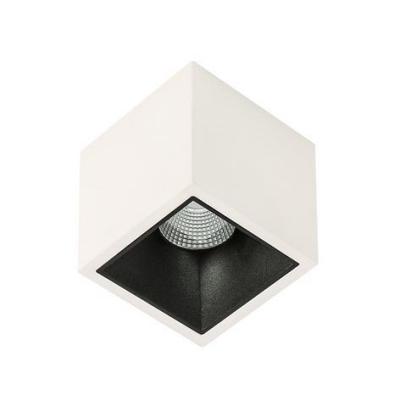 Levné Stropní svítidla: LED stropní bodové svítidlo ALDEN