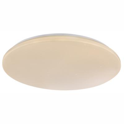 Levné Stropní svítidla: Stropní LED svítidlo na dálkové ovládání PAYN, stmívatelné, 55cm, kulaté