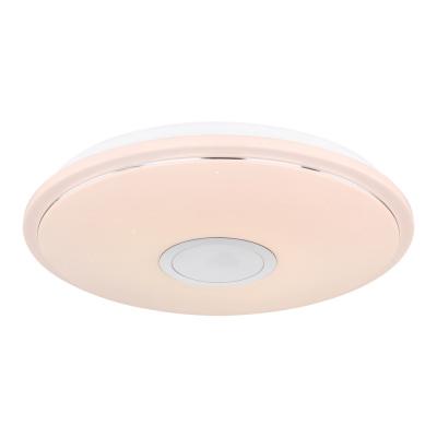 Levné Stropní svítidla: LED inteligentní stropní osvětlení s reproduktorem CONNOR, 50cm, kulaté