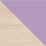 jasan coimbra - fialová